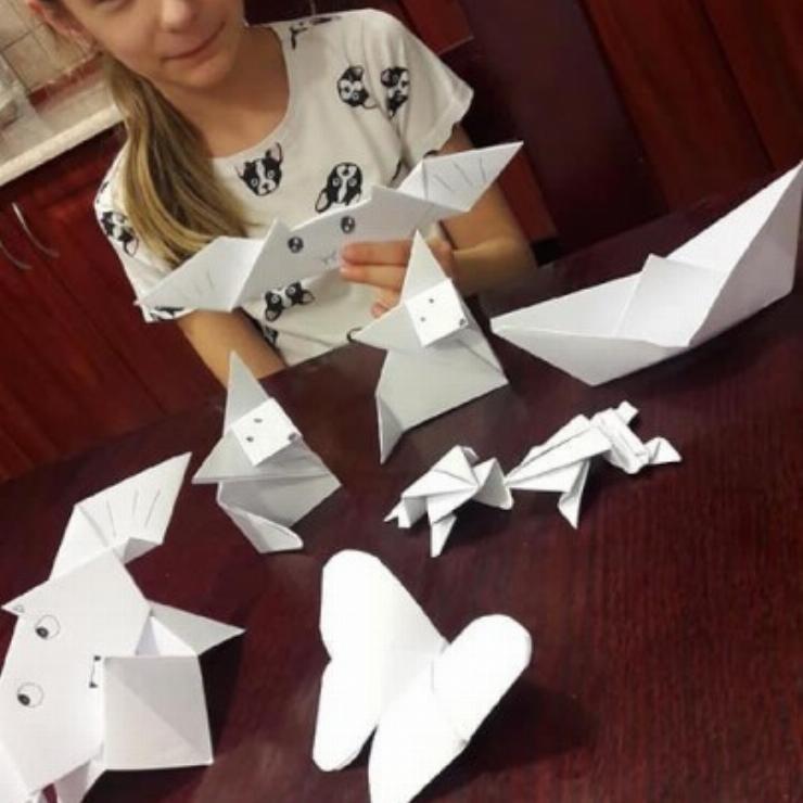 Obrazek galerii Origami